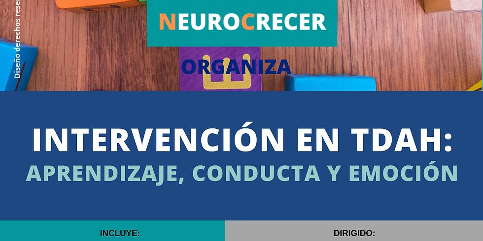 Neurocrecer - Intervención en TDAH