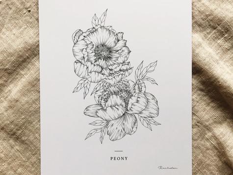 Peony Print