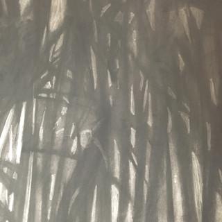 Detail, Bamboo at Night