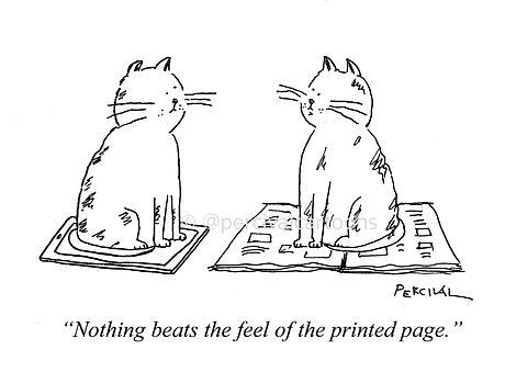 cat cartoon drawing by Percival.jpg