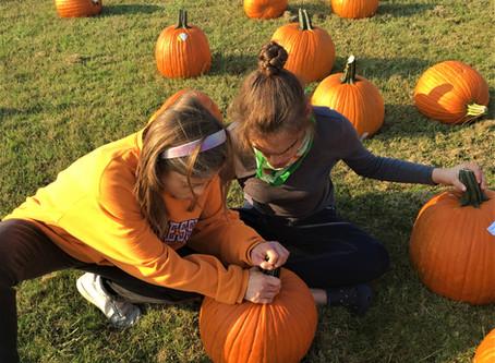 Pumpkin Patch Time!