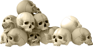A pile of skulls.