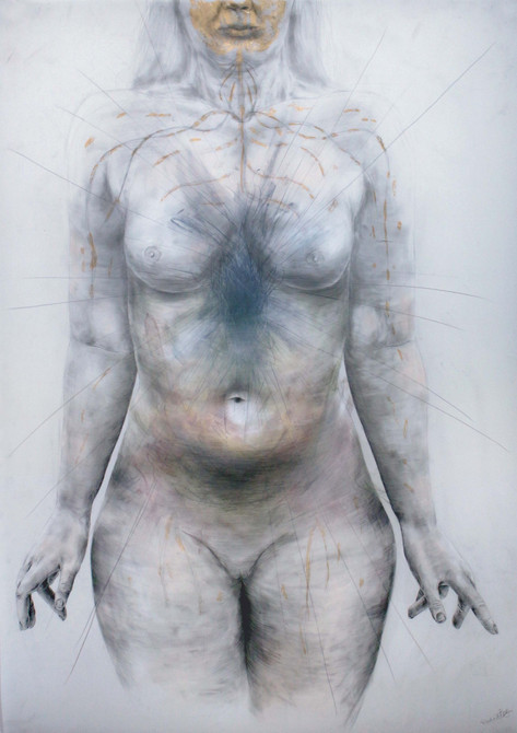 Visceral Anatomy: Ubiquitous