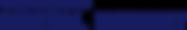 digital-insight-logo.png