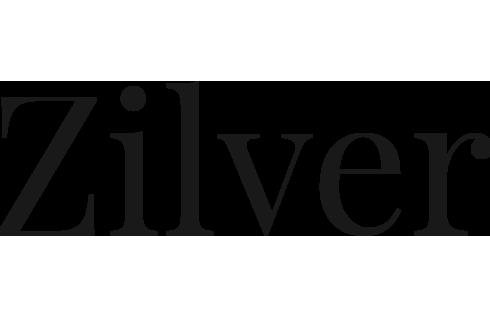 Zilver-transp-dark.png