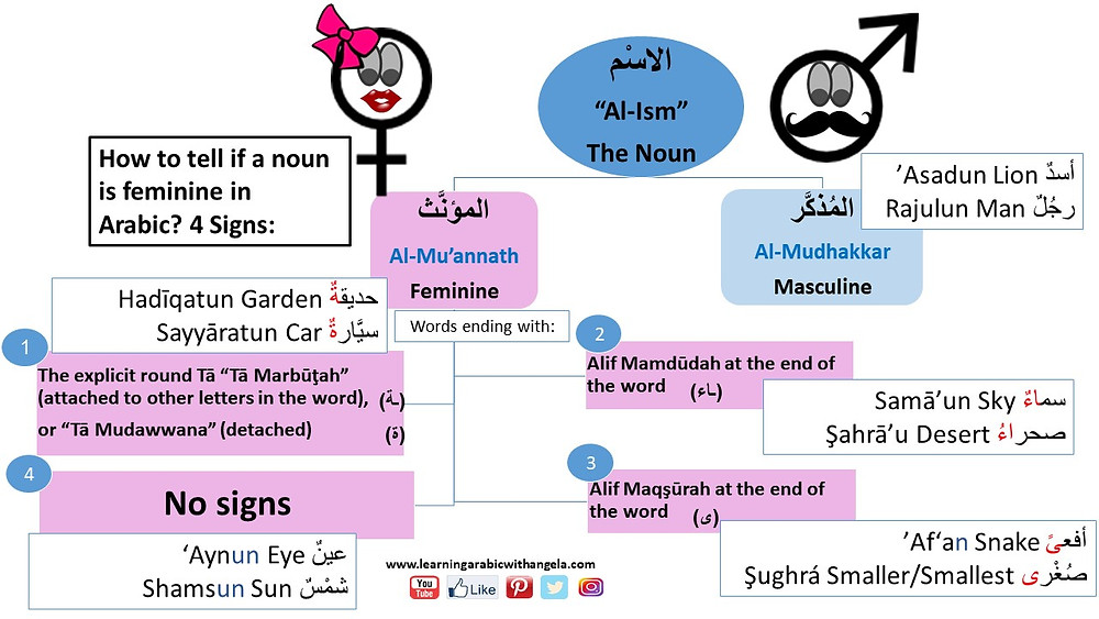 Flascrad: Feminine and Masculine in Arabic Language
