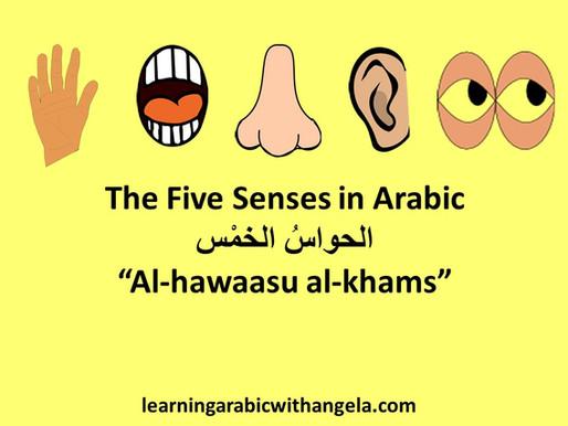 The Five Senses in Arabic