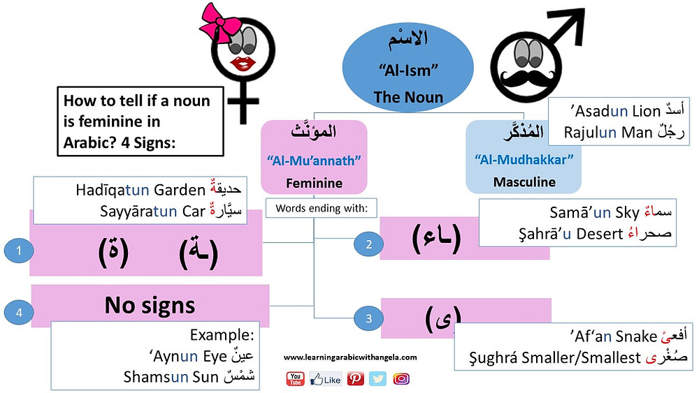 Flashcard: Feminine and Masculine in Arabic Language