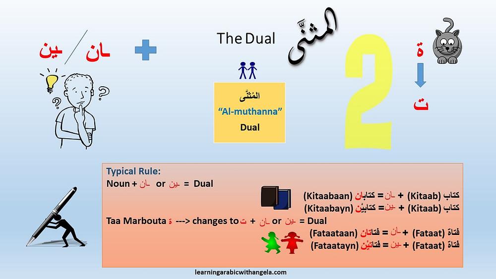 Flashcard: The Dual is Arabic Language.