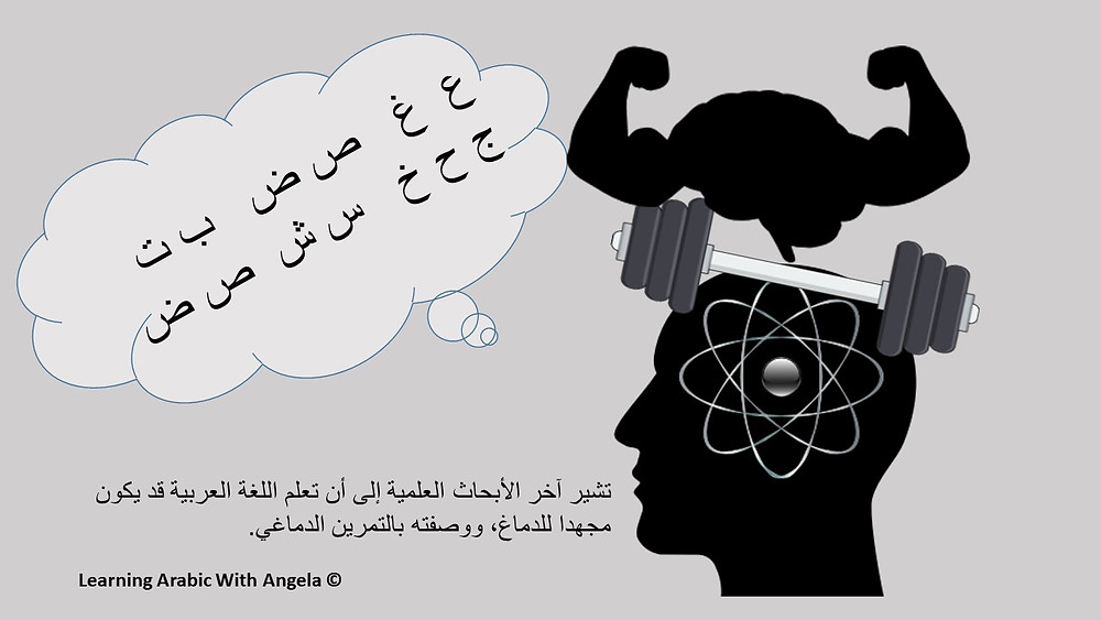 تشير آخر الأبحاث العلمية إلى أن تعلم اللغة العربية قد يكون مجهدا للدماغ، ووصفته بالتمرين الدماغي.