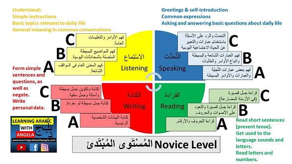 Expectations at Novice Beginner Level ACTF standards.jpg