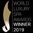 2019 Spa Awards Winner Logo Black Backgr