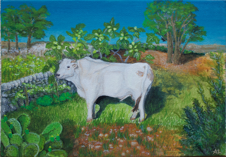 Mucca Bianca Sicilian white cow bull toro Sicily rural paintingSmall.png