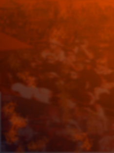 BloodyBackground.png