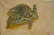 Signore Rospo lucky frog oil painting Sicily fine art image
