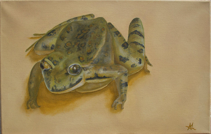 Signore Rospo tana lucky frog toad painting Sicilian art Buddhist zen