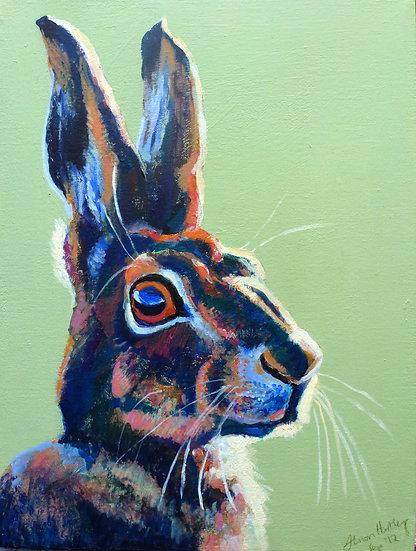 Hare in the Sun Print - BCA33