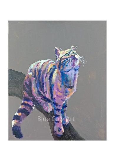 Wildcat A4 Print BCA34