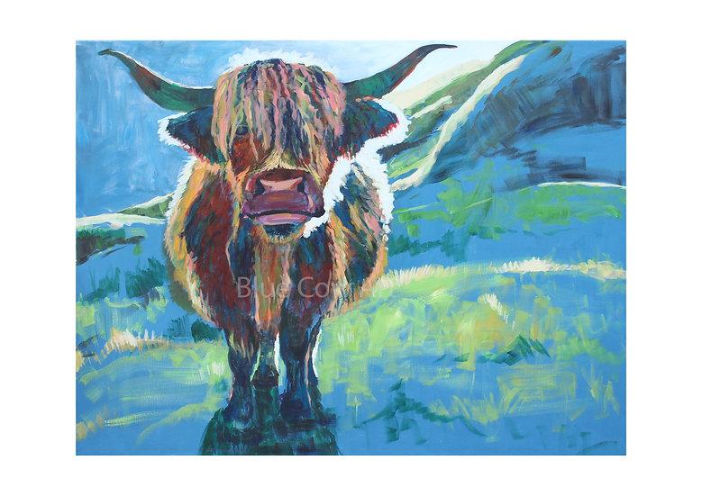 Highland Cow A4 Print BCA25