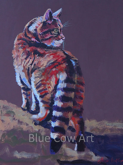 "Scottish Wildcat ""Paws for thought"" Print -BCA68"