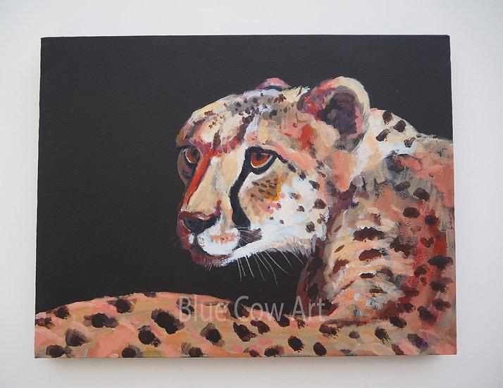 Cheetah - BCA77