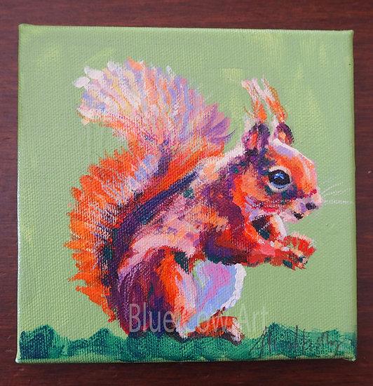 Red Squirrel BCA57