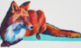 Fox Watermarked.jpg