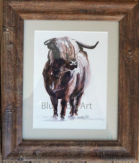 Highland Cow Framed- BCA82
