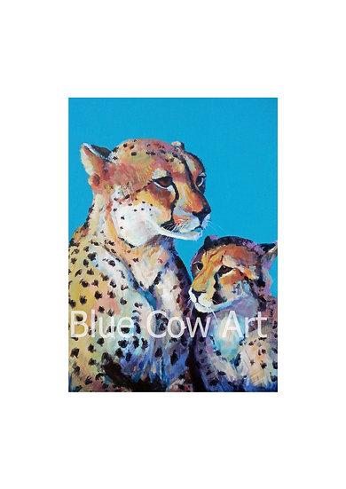 Cheetahs A4 Print - BCA13