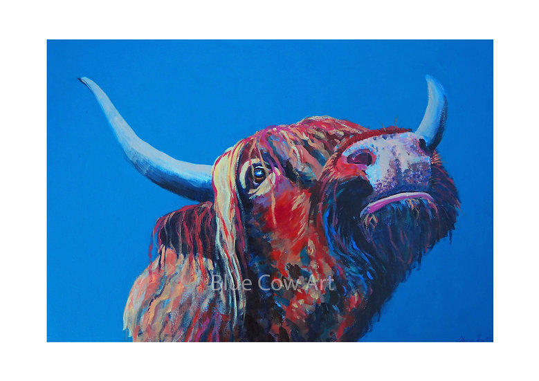 Highland Cow A4 Print BCA70