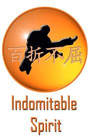 Indomitable Spirit at Taekwondo School of Excellence