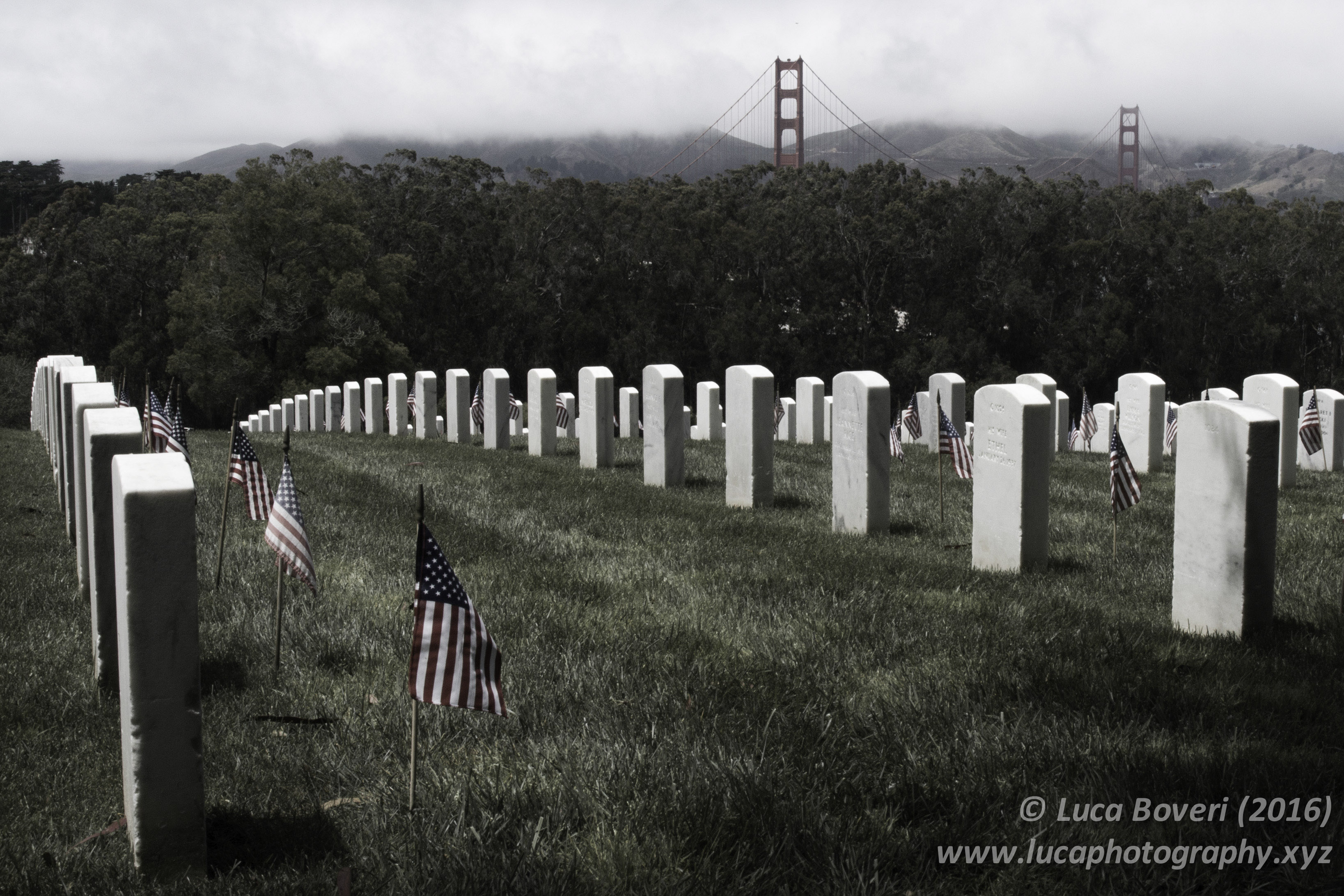 Military Cemetery in SF. @lucaboveri