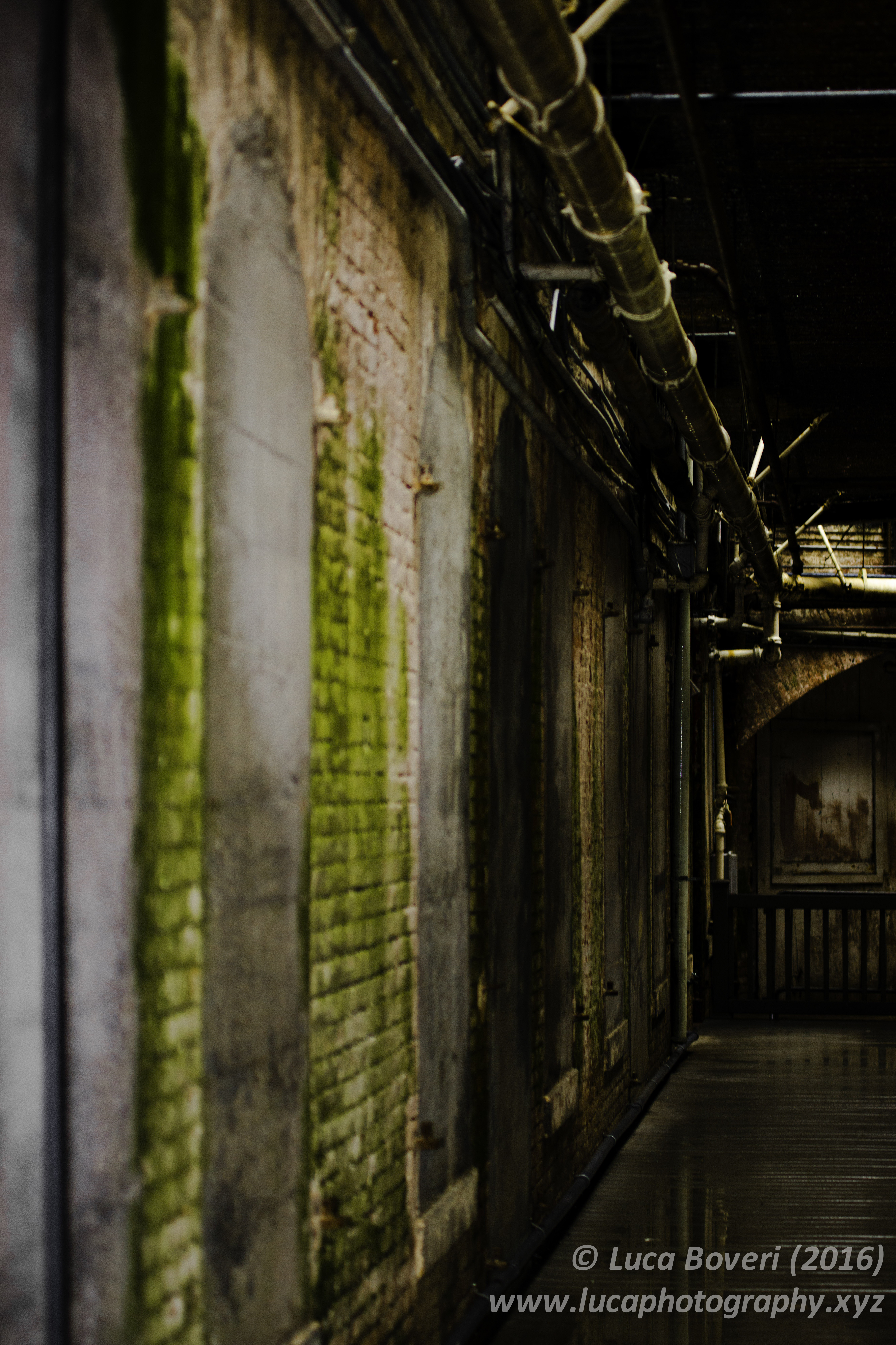 Corridors of Alcatraz. @lucaboveri