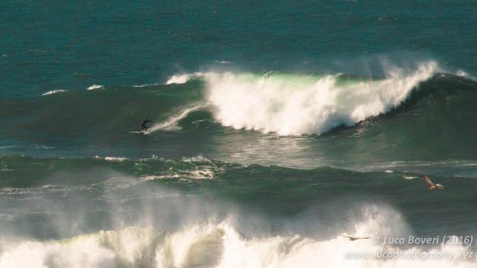 Chasing Mavericks. A morning with big wave riders and seals.