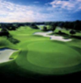 Ritz Golf 1.jpg