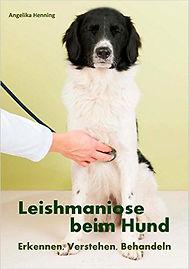 Buch-Leishmaniose-beim-Hund