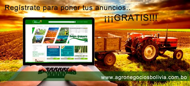 AGRONEGOCIOS BOLIVIA