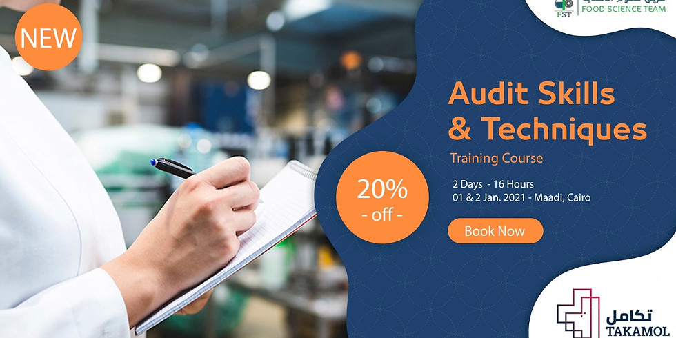 Audit Skills and Techniques