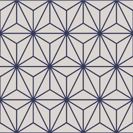 StarOpt3tile-7 (1).png
