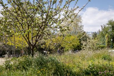 Parc Bajatière - Grenoble
