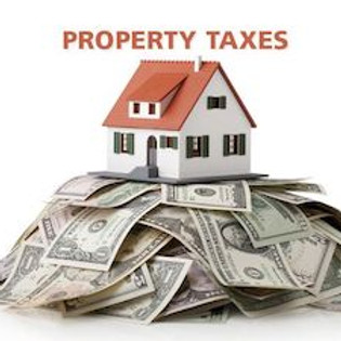 Learn about Property Tax Grievance, Property Tax Exemptions & Financial Scams