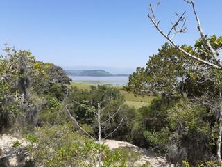 APA da Lagoa de Itapeva (Torres-RS).