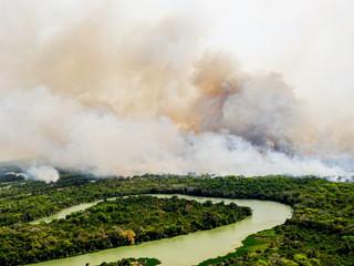 Mudanças climáticas e preservação ambiental em foco nas eleições municipais