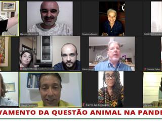 WEBINAR: O Agravamento da Questão Animal na Pandemia