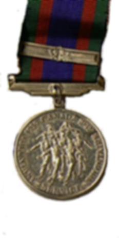 Médaille canadienne du volontaire Canadian Volunteer Service Medal