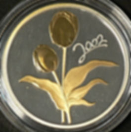 tulipes - tulips 2002