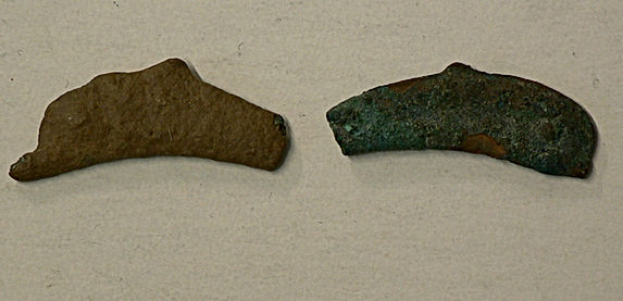 Un dauphin vieux de 2500 ans! - A 2500 Years Old Dolphin!