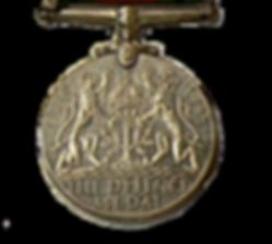 Médaille de la défense Defence Medal