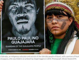 BREAKING Record 212 land & environment activists killed in 2019