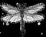 TI-logo--image-only-12-19.png